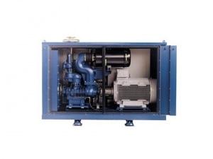 Delta Screw 1 - Aerzen компрессоры, воздуходувки