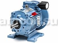 k2 1 1 - Var-Spe вариаторы, гидродвигатели, насосы