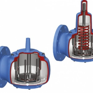 img10348 10201 300x300 - Anderson Greenwood клапаны