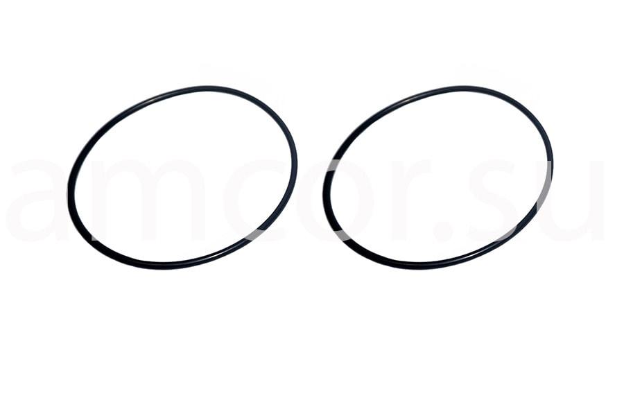 Заказать сервис и поставку уплотнительных колец Ro-Flo в России и СНГ от официального производителя.