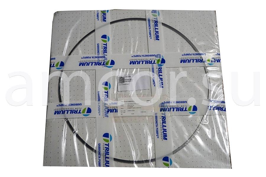 Заказать поставку прокладок Trillium Pumps Italy Srl в России и СНГ от официального производителя.